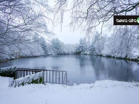 Frio veio para ficar e traz companhia: Neve em cotas baixas desde Bragança ao Alentejo