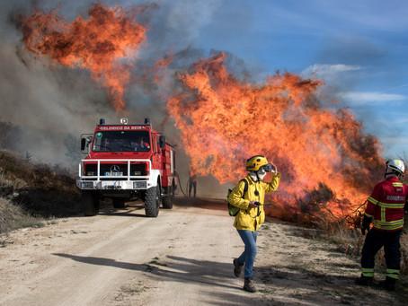 Governo declara situação de alerta entre quarta e domingo devido ao risco de incêndio