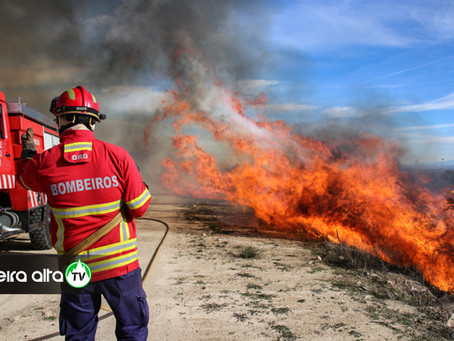 Municípios de Trancoso e Gouveia proíbem queimas e queimadas entre 9 e 13 de abril