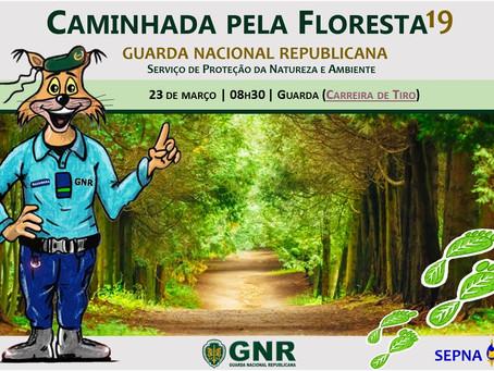 """GNR promove """"Caminhada pela Floresta"""" e Percurso de Orientação na cidade da Guarda"""