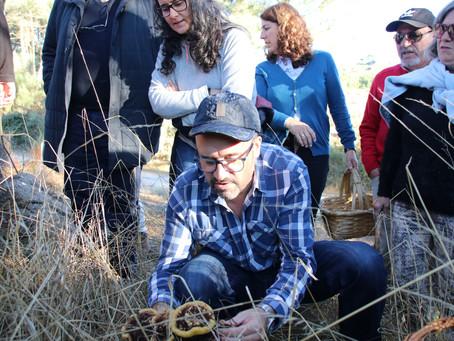 À descoberta dos cogumelos em Celorico da Beira