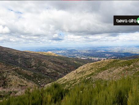 Gouveia celebra Dia Mundial da Árvore com a inauguração da Rota Ambiental do Vale de Cadela