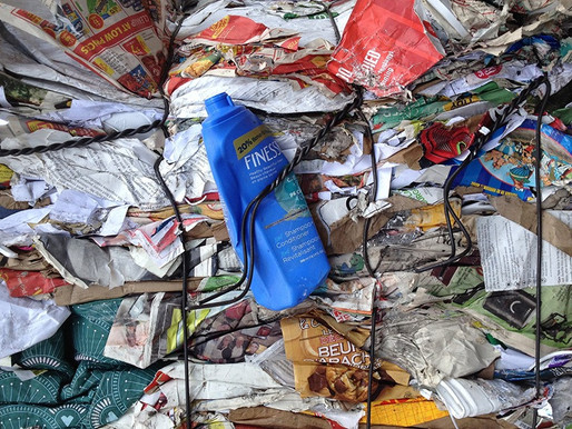 Wasted Beauty: A Case for a More Sustainable Cosmetics Industry