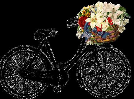 kisspng-bicycle-baskets-vintage-clothing