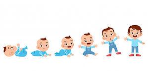 toddler-grow-cycle-process_97632-738.jpg