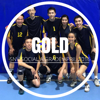 SNV Social A - Gold - April 2016