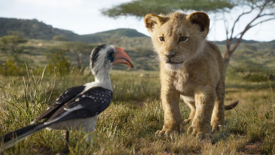 Matinée magique Le Roi Lion