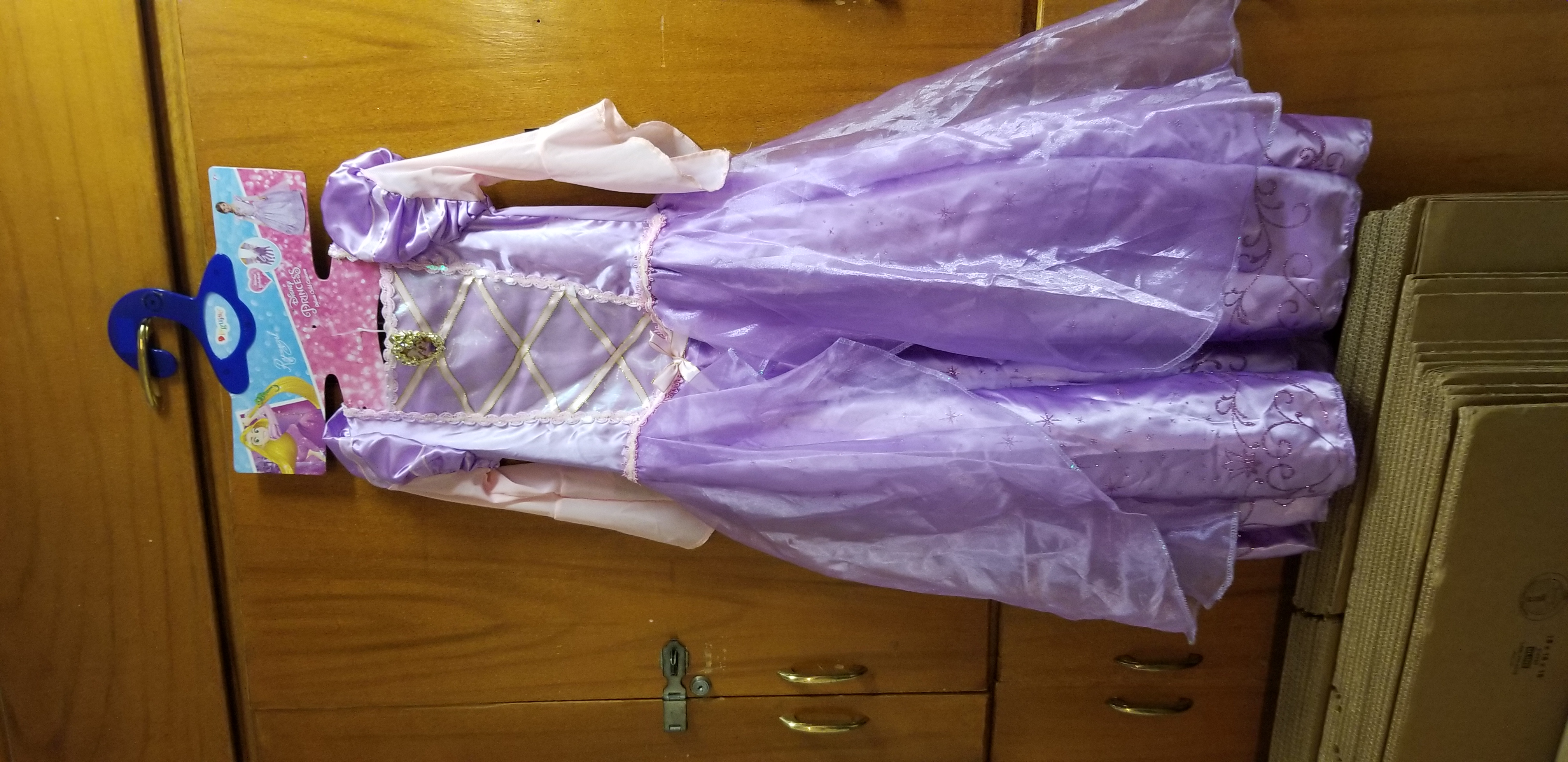 Disney Princess Costume