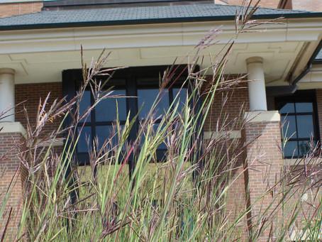 University of Minnesota Morris is One of Sierra Club's Top 40 Cool Schools 6 Years in a Row