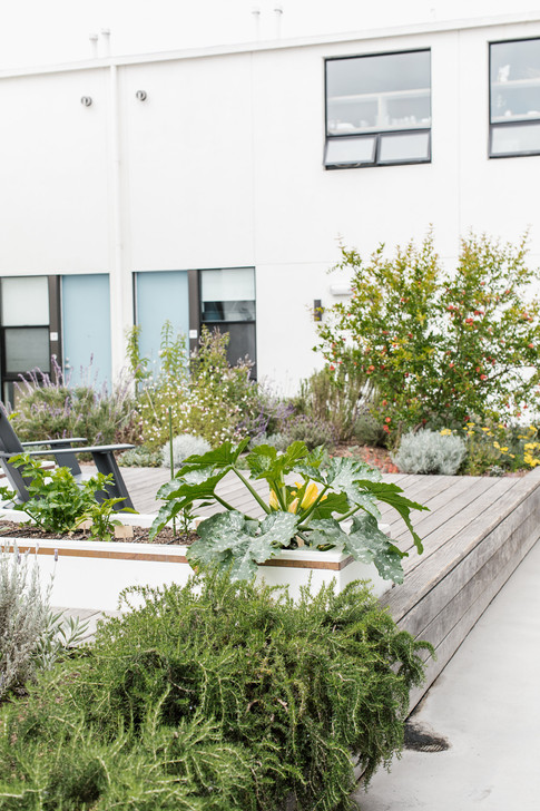 Venice Beach Abodes, a boutique hotel by KaidCo. Developments and Kylie Burton