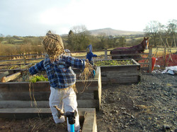 Scarecrows and Roly