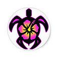 hawaiian turtle color.jpg