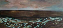 nagyszékely fields oil on canvas 2012 55 x 35 cm