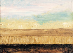 misla cornfield  2012  20 x 30 cm