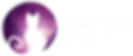 Regnum Studio's Logo, A Silhouet ofa Cat Looking Towards the Galaxy