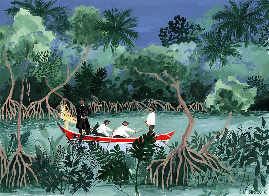 Mangroves landcape, Lil Sire illustation gouache painting Martinique, aventure, nature