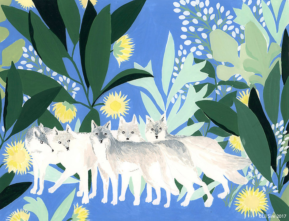 coeur de la meute, loups wolfs, illustration lil sire, gouache painting, illustation enfant, children illustation