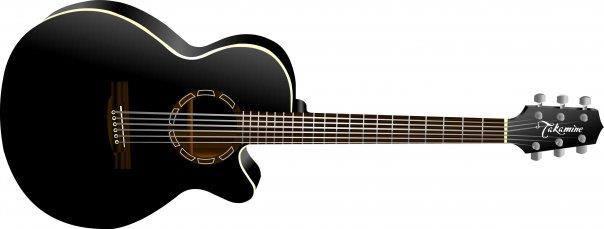 Takamine Guitar Design