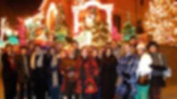 Website Holiday Lights Dyker.jpg