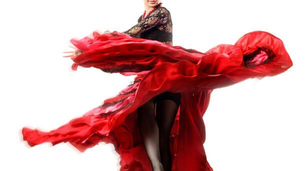 Flamenco Dinner Show