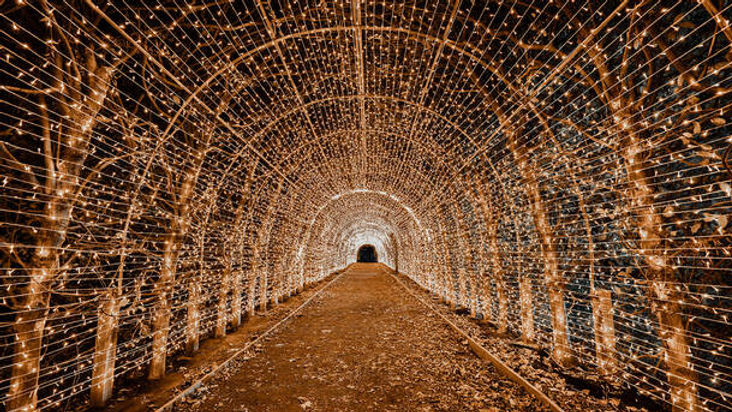 Website Holiday Lights Lantern.jpg