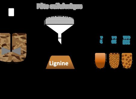 Extraction de la lignine du bois pour la transformer en fibres de carbone