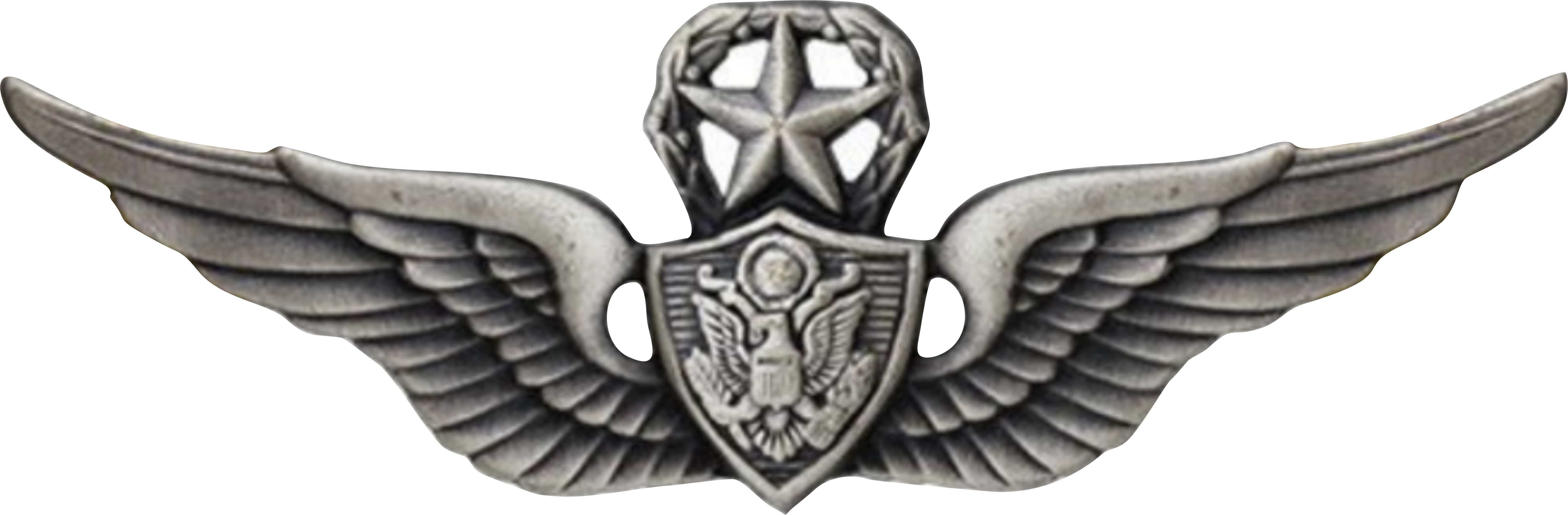 CREWMEMBER WINGS WITH WREATH AND STAR