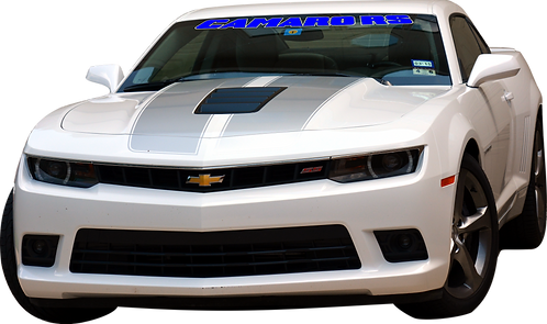 Camaro RS - Blue and White Windshield Graphic