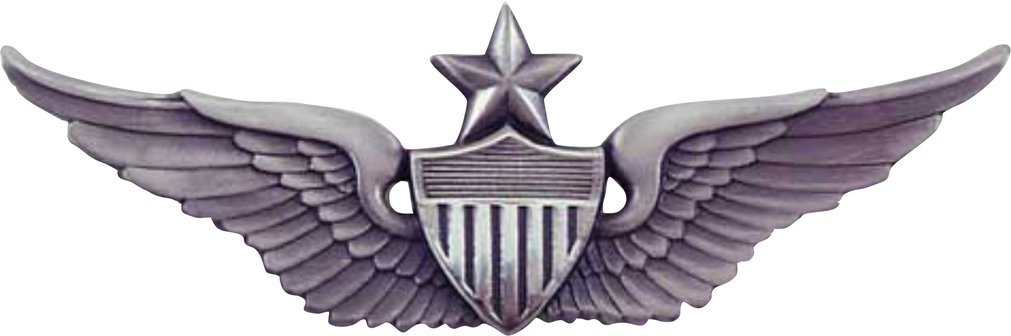 PILOTS WINGS WITH STAR