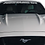 Thumbnail: Mustang GT - Gray and White Windshield Graphic
