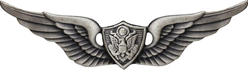 Air Crew Badge