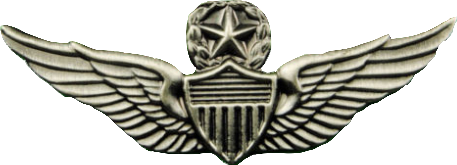PILOTS WINGS WITH STAR AND WREATH