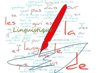 Perspectives linguistiques pour l'enseignement des langues secondes
