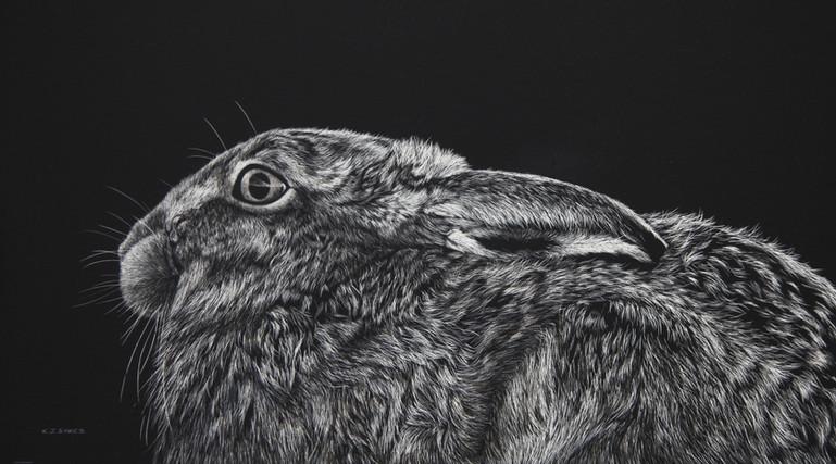 Brown Hare (Landscape)-EDIT.jpg