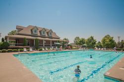 yard and pool-3