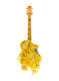Acoustic Fall, Double Exposure
