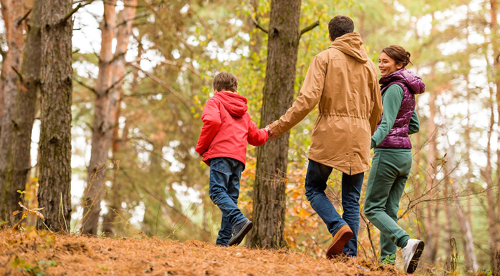 happy-young-family-walking-and-holding-hands-in-au-W8G5UR9.jpg