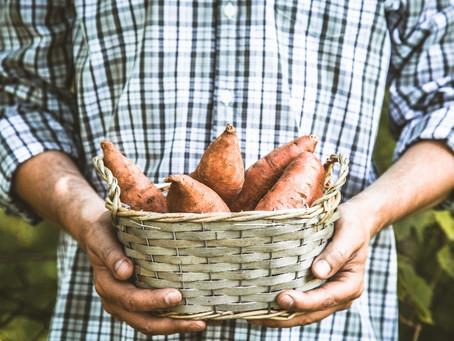 Szezonális zöldségek a tavasz elején