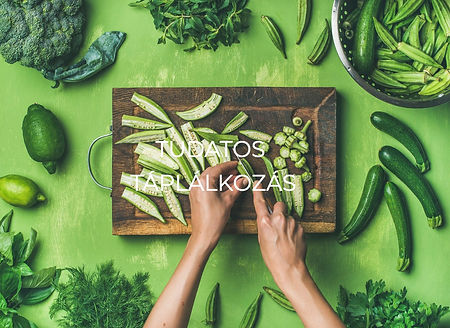 flat-lay-of-healthy-green-vegan-cooking-