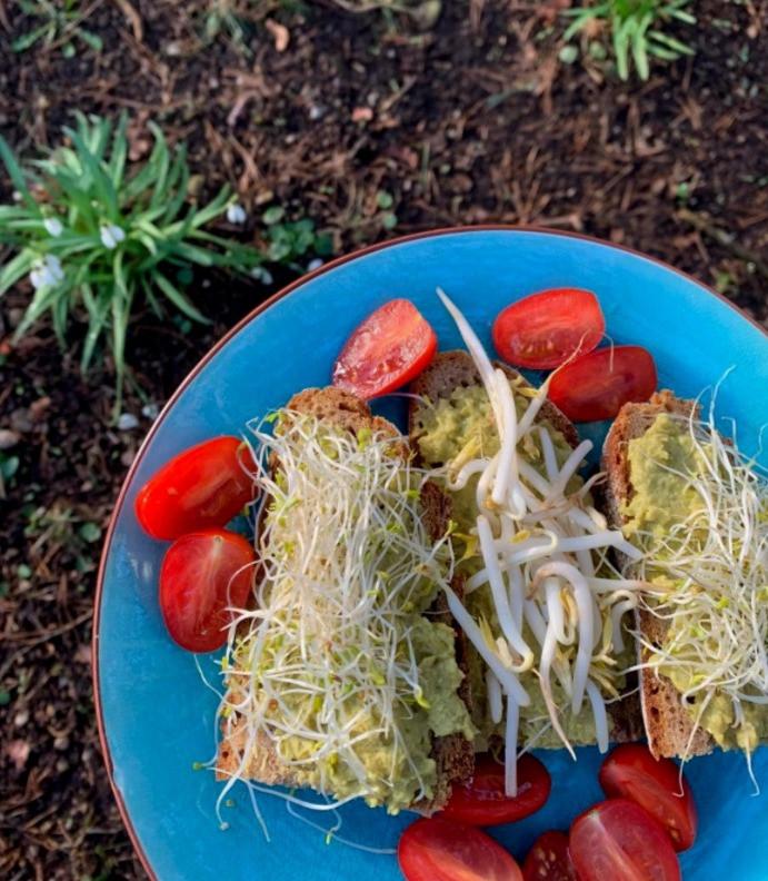 Zöldborsókrém lucernacsírával és mungóbabcsírával