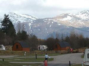 Pine Tree's Campsite