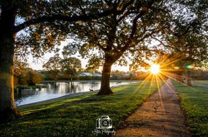 Memorial Park, as the sun goes down