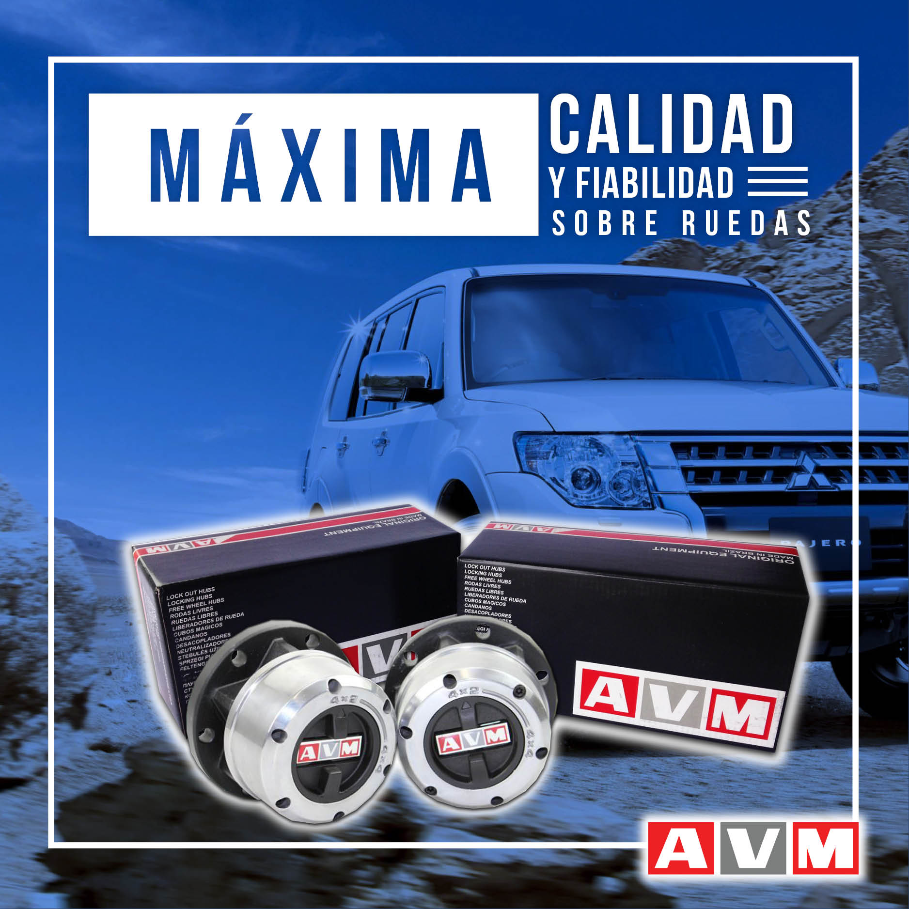 11- FB AVM
