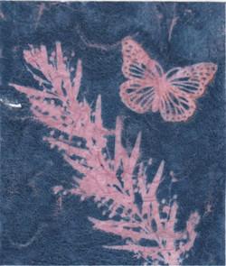 Bush Trinkets - Pink Wattle