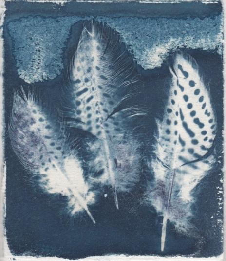 Bush Trinkets - Feathers
