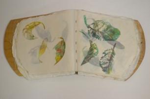 Artist Book - Organica (open)