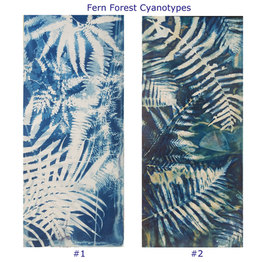 Fern Forest small