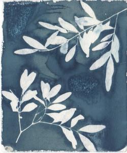 Bush Trinkets - Leaves
