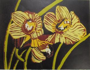 OrchidIn Bloom