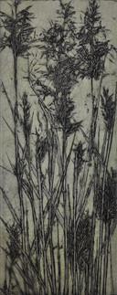 Jacky Lowry - Elastic Grass